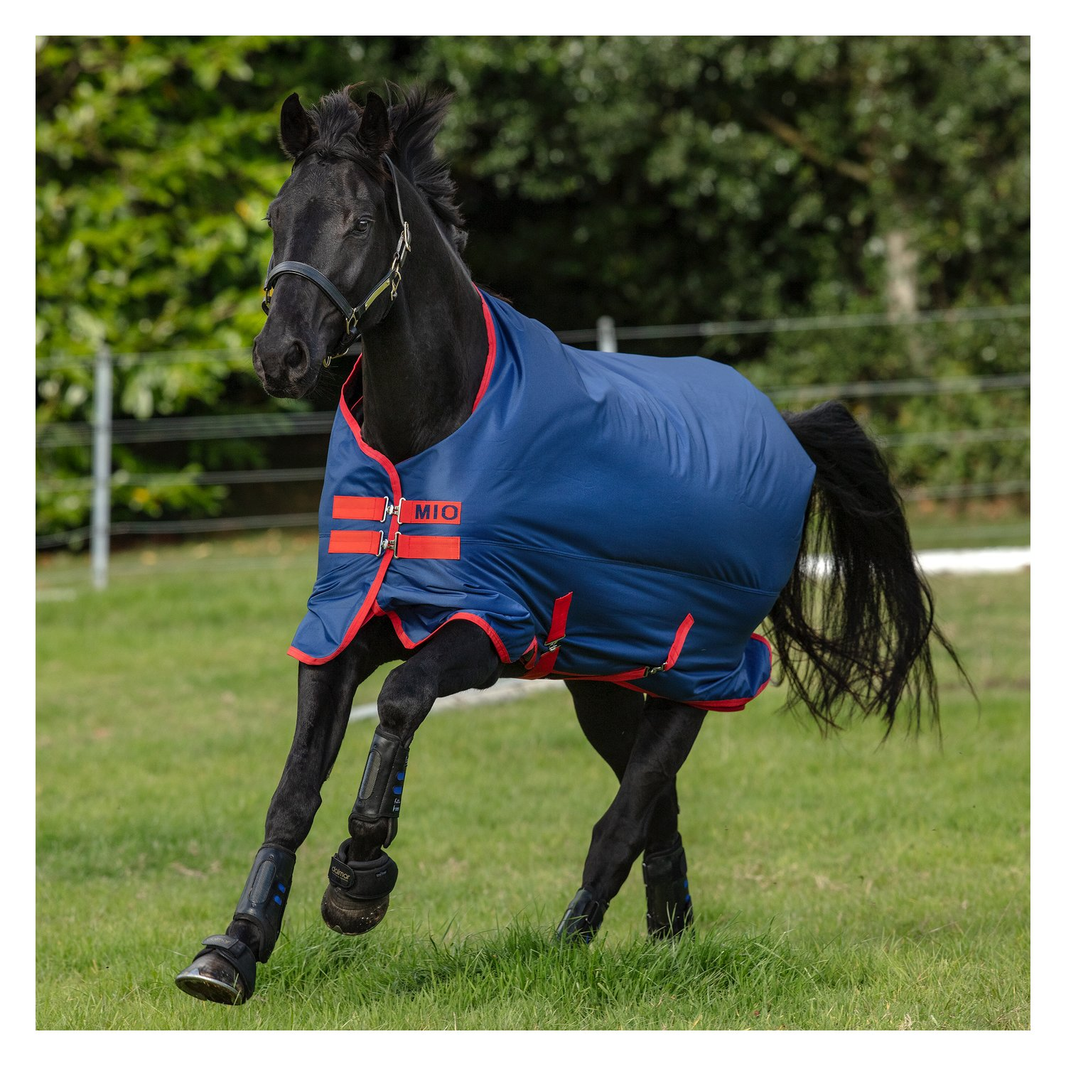 Попона Amigo Mio Medium Turnout, Horseware